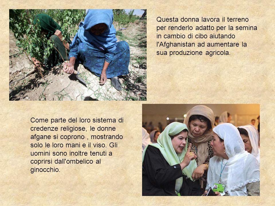 Questa donna lavora il terreno per renderlo adatto per la semina in cambio di cibo aiutando l Afghanistan ad aumentare la sua produzione agricola.