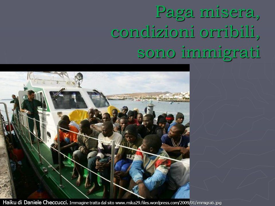 Paga misera, condizioni orribili, sono immigrati