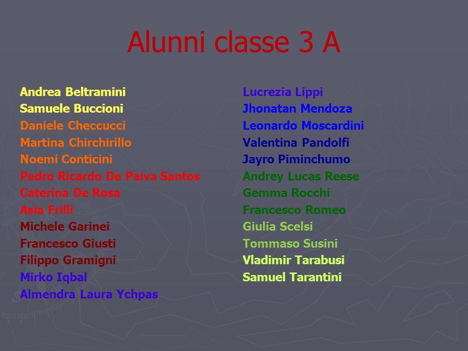 Alunni classe 3 A Andrea Beltramini Samuele Buccioni Daniele Checcucci