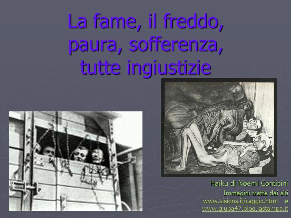 La fame, il freddo, paura, sofferenza, tutte ingiustizie