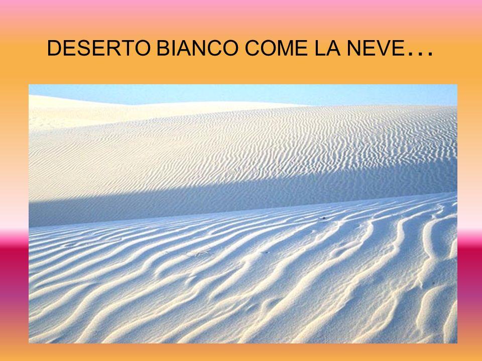 DESERTO BIANCO COME LA NEVE…