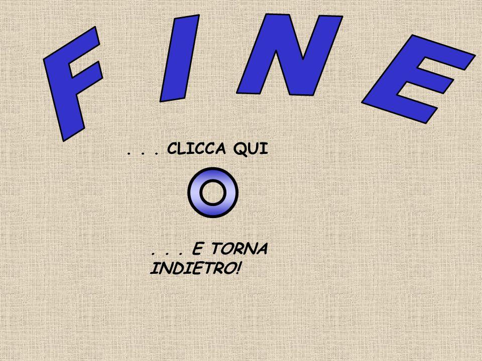 F I N E . . . CLICCA QUI . . . E TORNA INDIETRO!