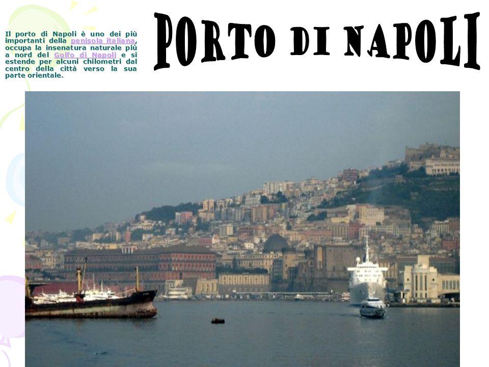 Il porto di Napoli è uno dei più importanti della penisola italiana, occupa la insenatura naturale più a nord del Golfo di Napoli e si estende per alcuni chilometri dal centro della città verso la sua parte orientale.