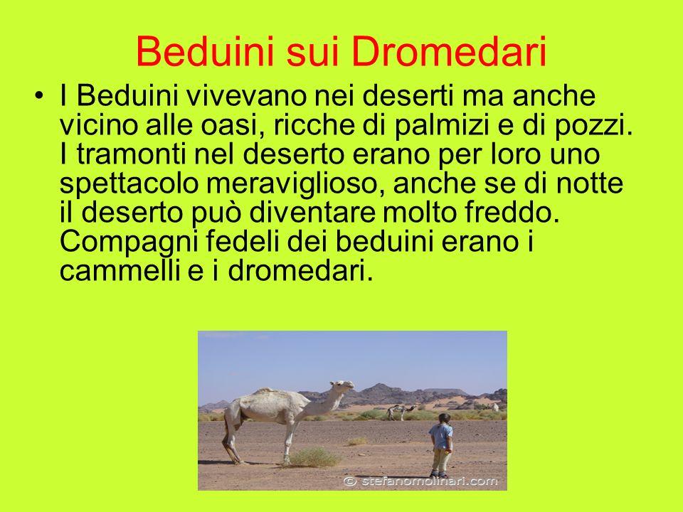 Beduini sui Dromedari