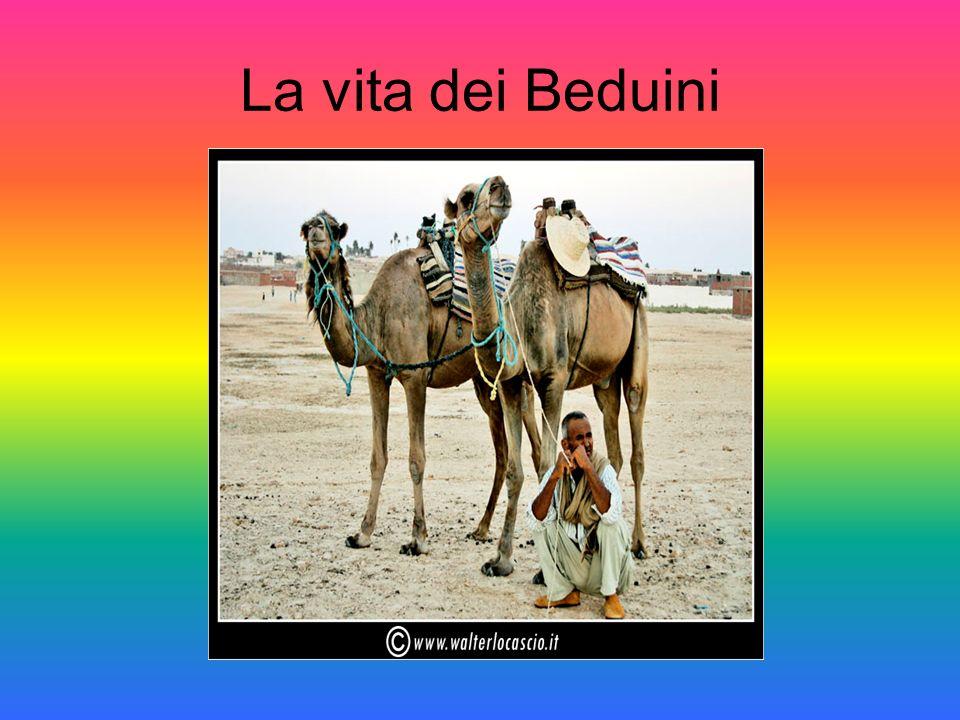 La vita dei Beduini