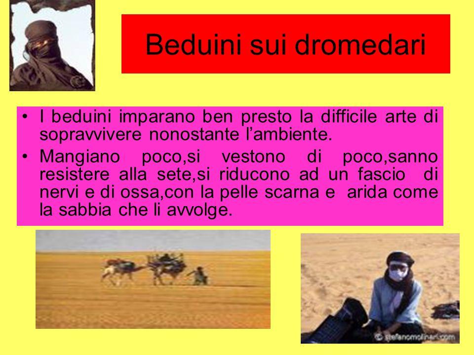 Beduini sui dromedari I beduini imparano ben presto la difficile arte di sopravvivere nonostante l'ambiente.