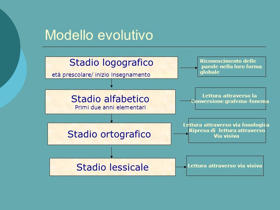 Modello evolutivo Stadio logografico