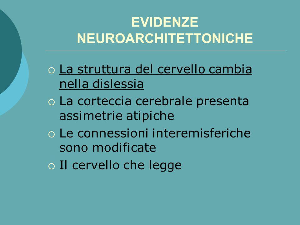 EVIDENZE NEUROARCHITETTONICHE