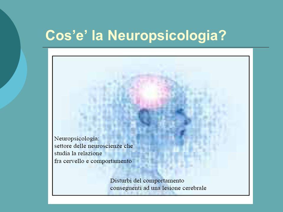 Cos'e' la Neuropsicologia