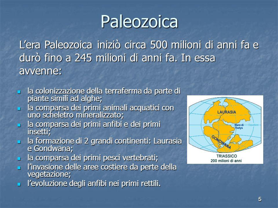 Paleozoica L'era Paleozoica iniziò circa 500 milioni di anni fa e durò fino a 245 milioni di anni fa. In essa avvenne: