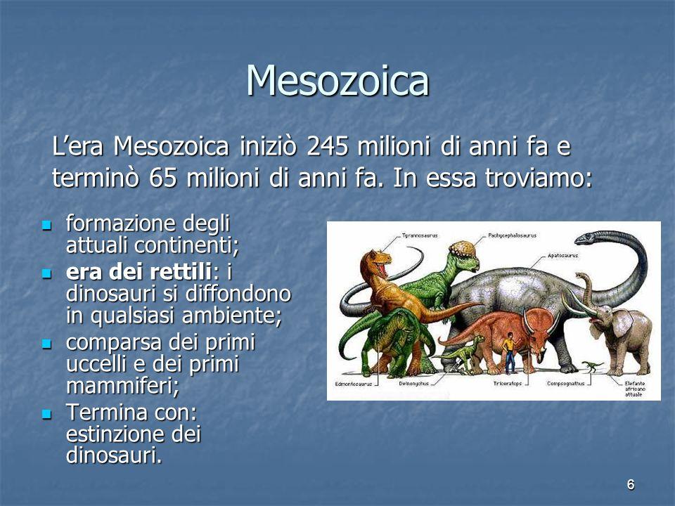 MesozoicaL'era Mesozoica iniziò 245 milioni di anni fa e terminò 65 milioni di anni fa. In essa troviamo:
