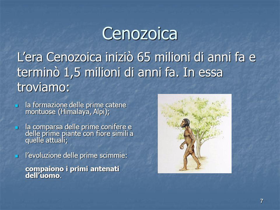 CenozoicaL'era Cenozoica iniziò 65 milioni di anni fa e terminò 1,5 milioni di anni fa. In essa troviamo:
