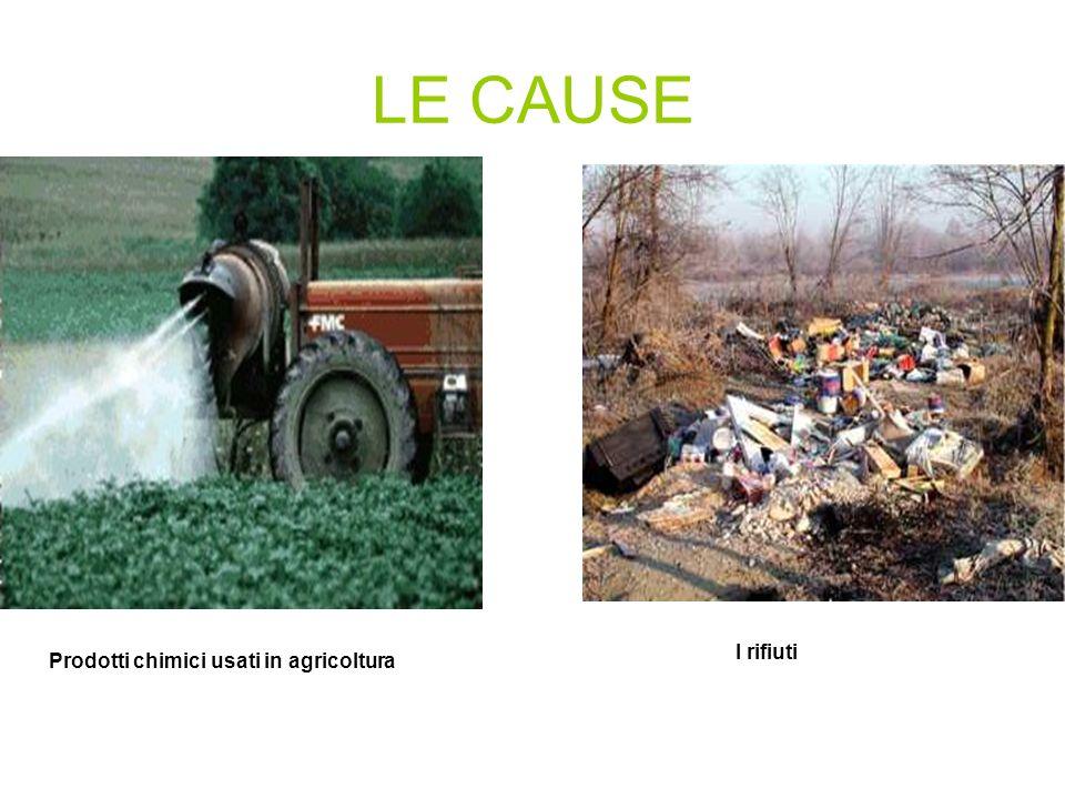 LE CAUSE I rifiuti Prodotti chimici usati in agricoltura