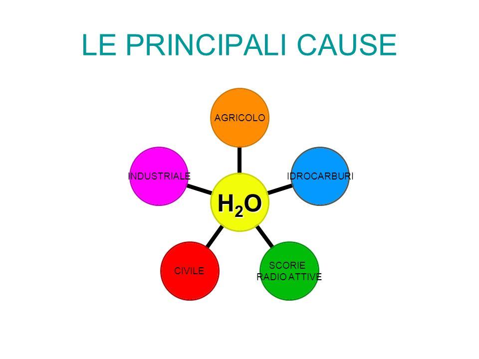LE PRINCIPALI CAUSE