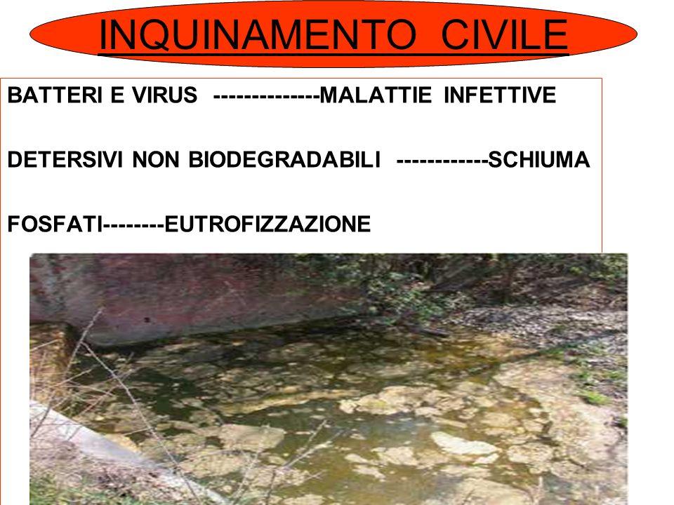 INQUINAMENTO CIVILE BATTERI E VIRUS --------------MALATTIE INFETTIVE