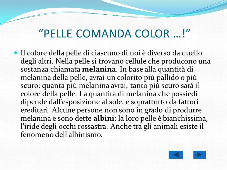 PELLE COMANDA COLOR …!