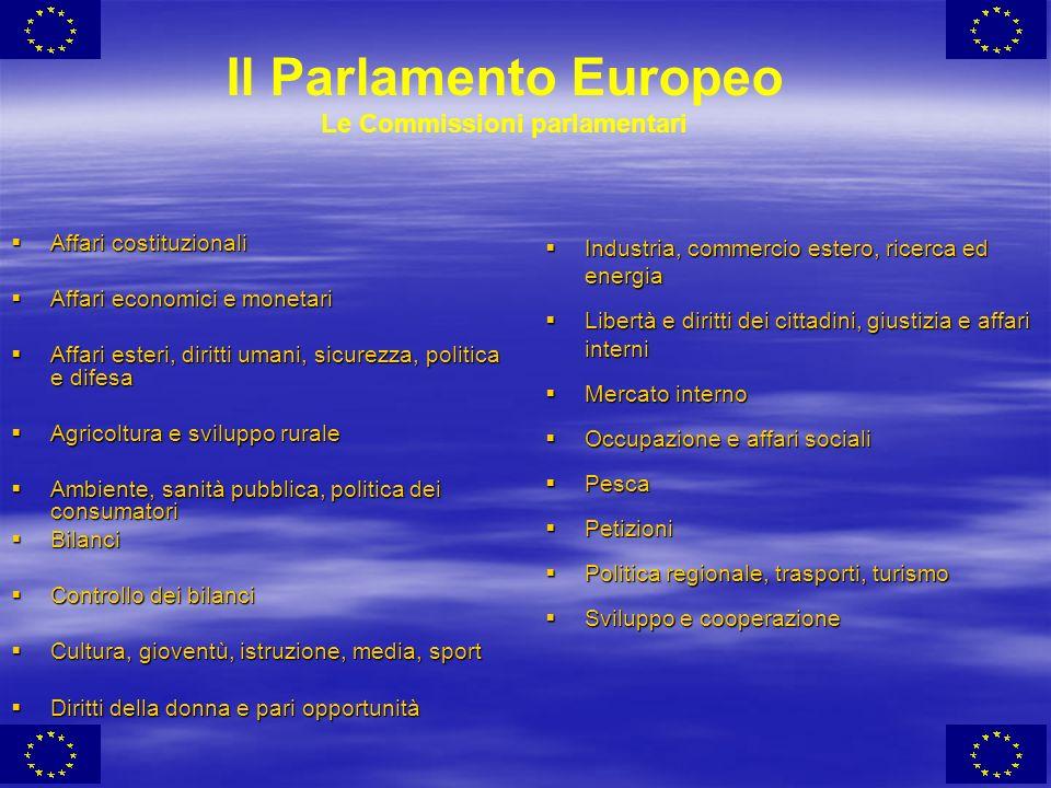 Il Parlamento Europeo Le Commissioni parlamentari