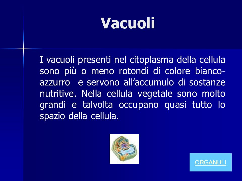 Vacuoli