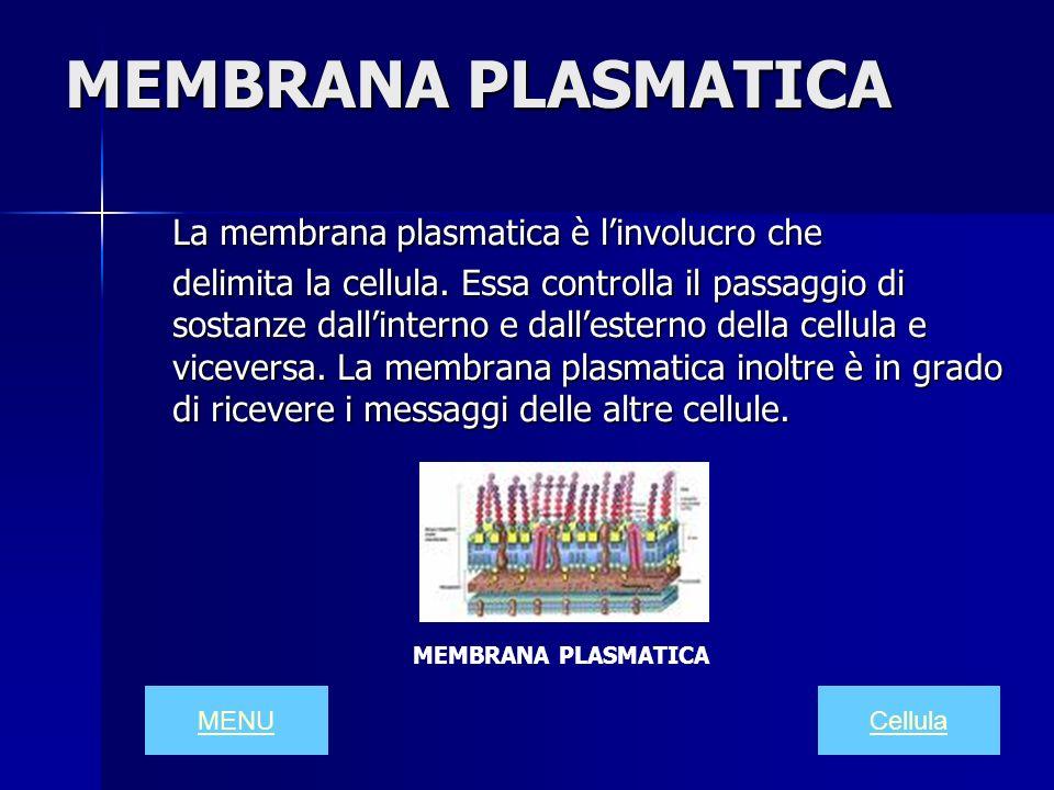 MEMBRANA PLASMATICA La membrana plasmatica è l'involucro che