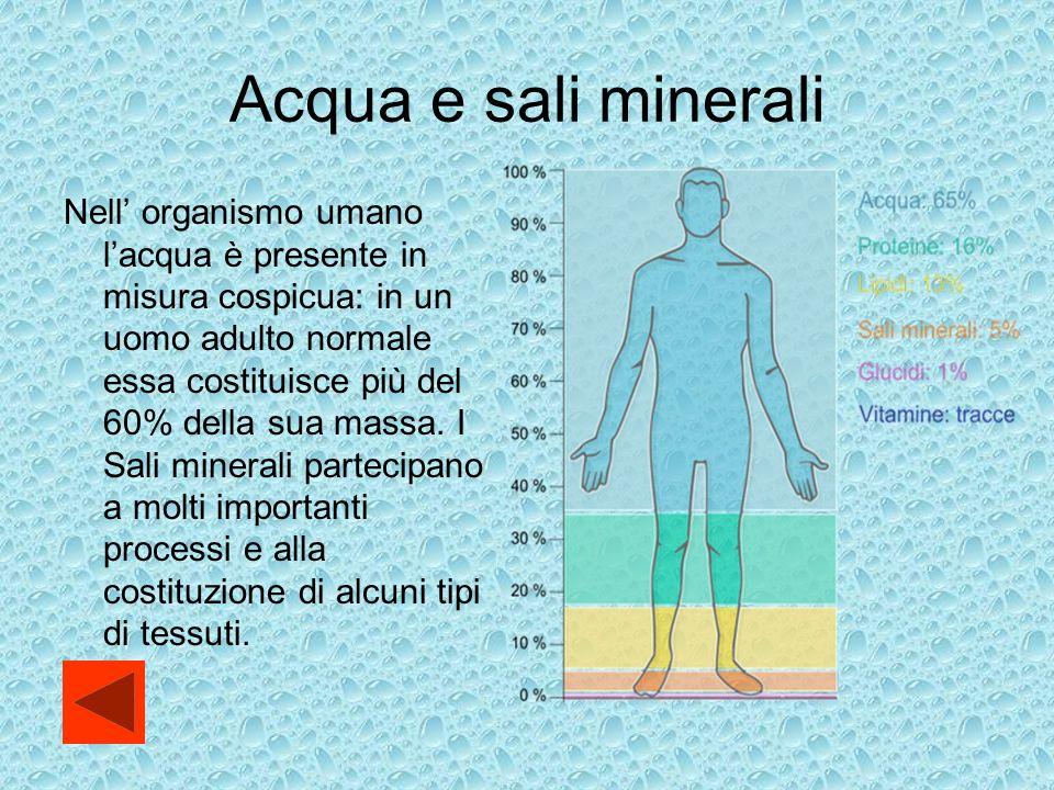 Acqua e sali minerali