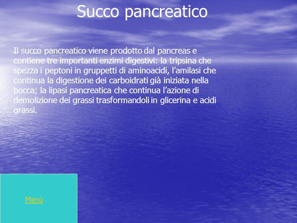 Succo pancreatico