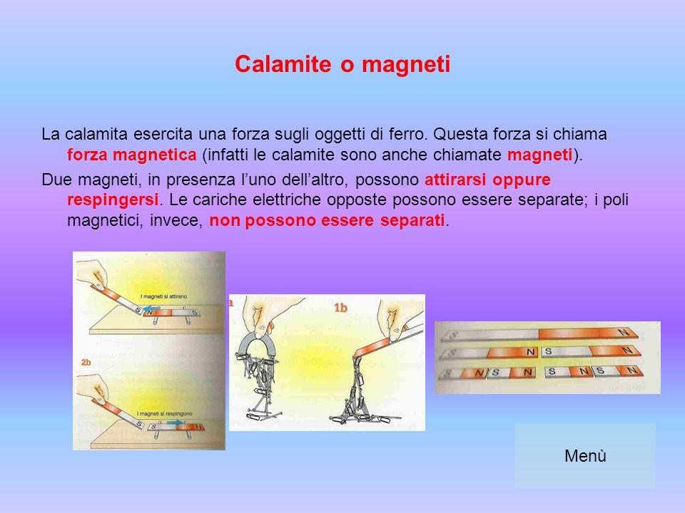 Calamite o magneti