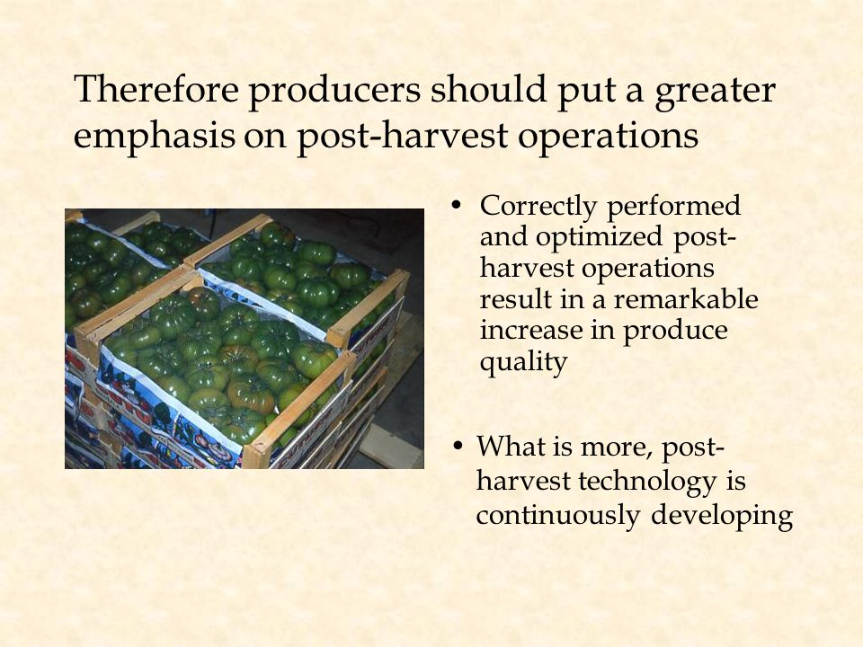 Therefore producers should put a greater emphasis on post-harvest operations