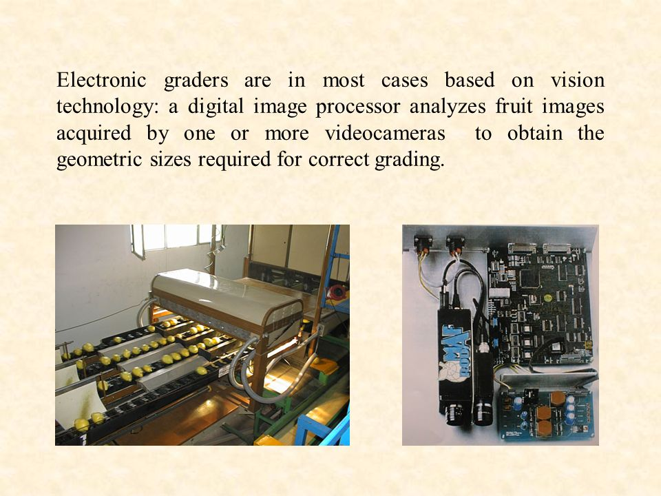 Electronic graders are in most cases based on vision technology: a digital image processor analyzes fruit images acquired by one or more videocameras to obtain the geometric sizes required for correct grading.