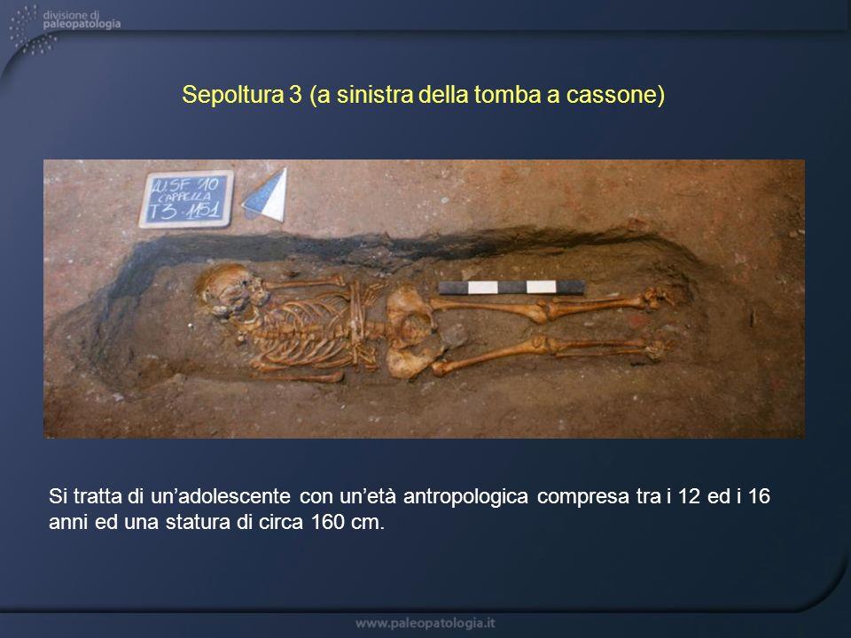 Sepoltura 3 (a sinistra della tomba a cassone)