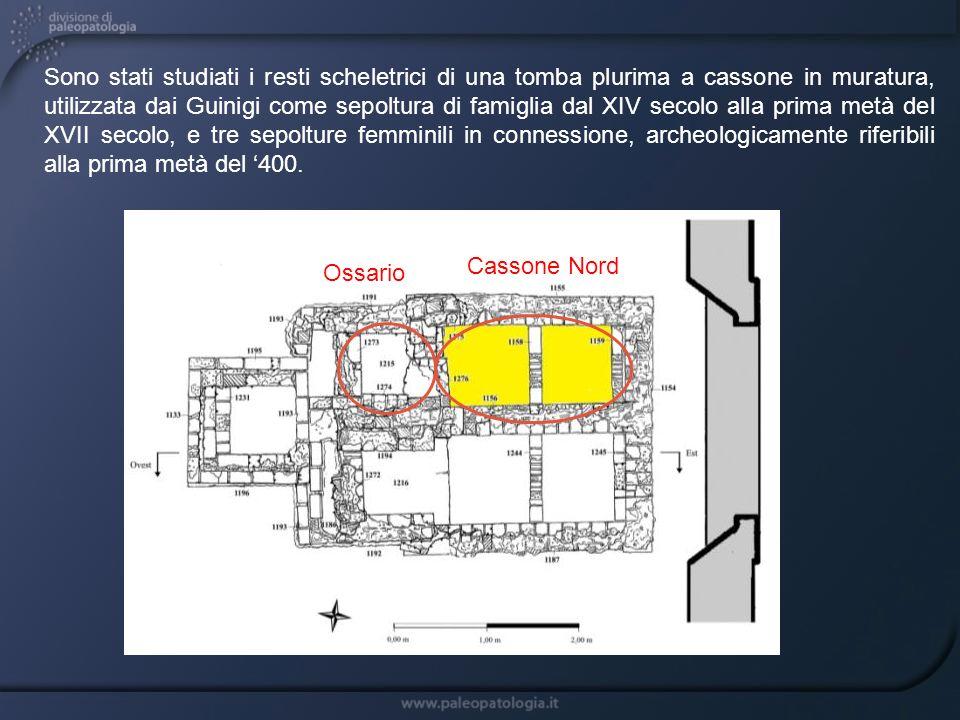 Sono stati studiati i resti scheletrici di una tomba plurima a cassone in muratura, utilizzata dai Guinigi come sepoltura di famiglia dal XIV secolo alla prima metà del XVII secolo, e tre sepolture femminili in connessione, archeologicamente riferibili alla prima metà del '400.