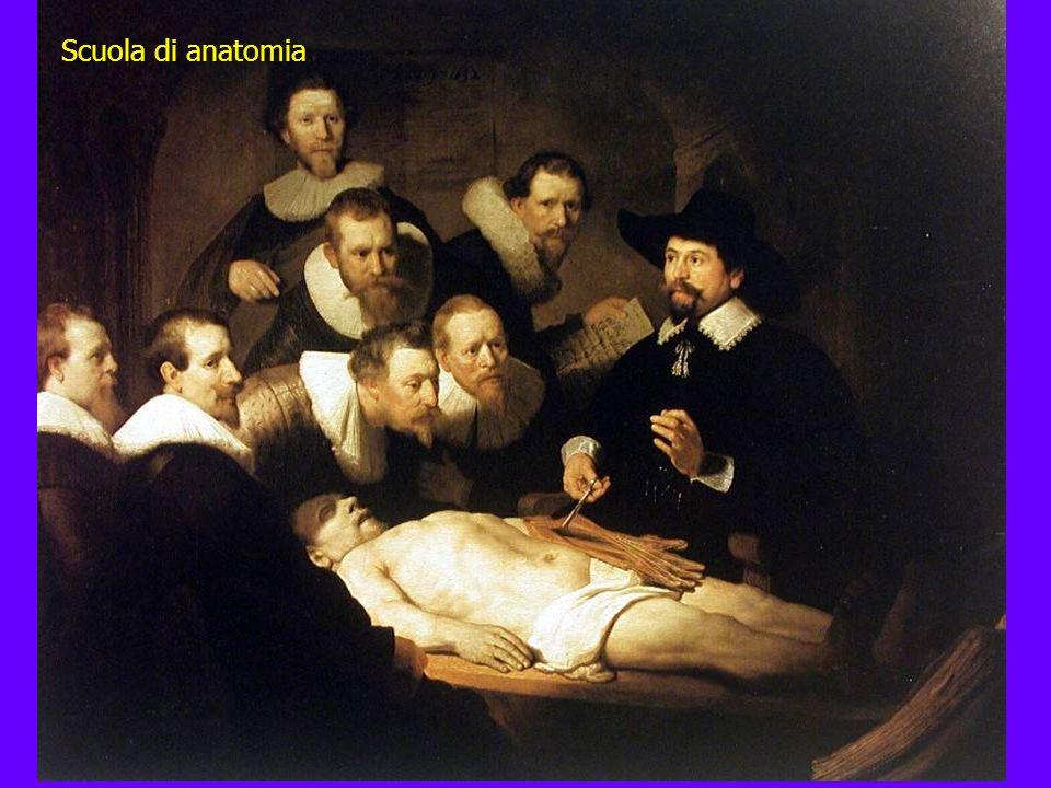 Scuola di anatomia