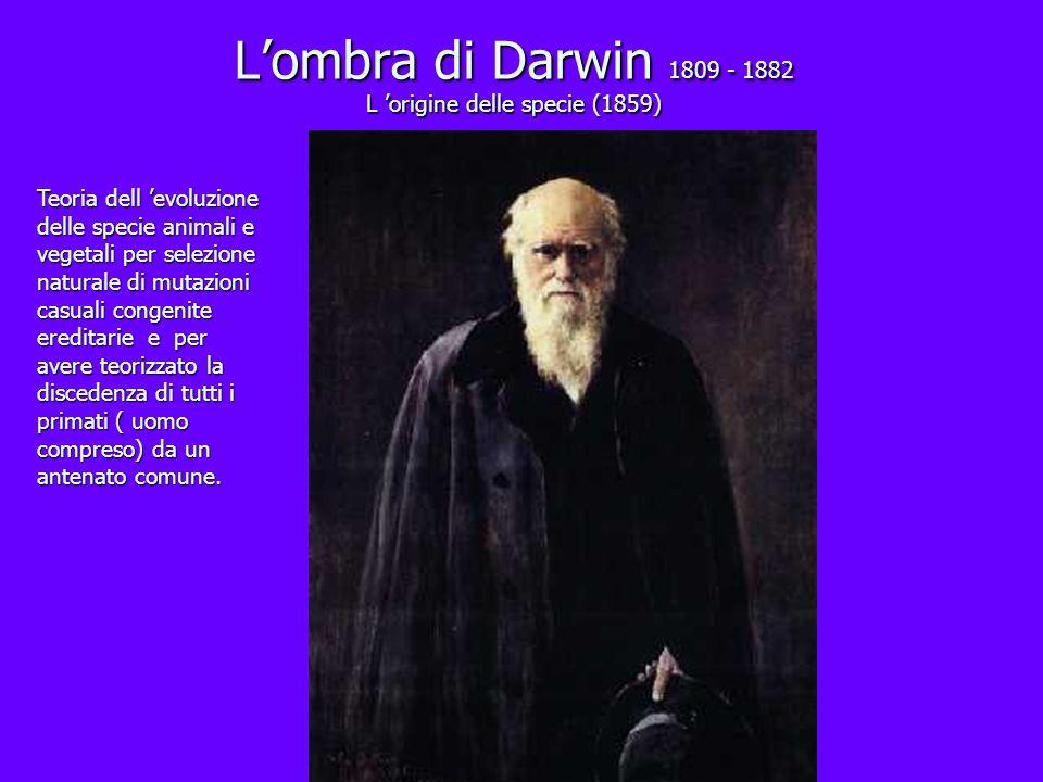 L'ombra di Darwin 1809 - 1882 L 'origine delle specie (1859)