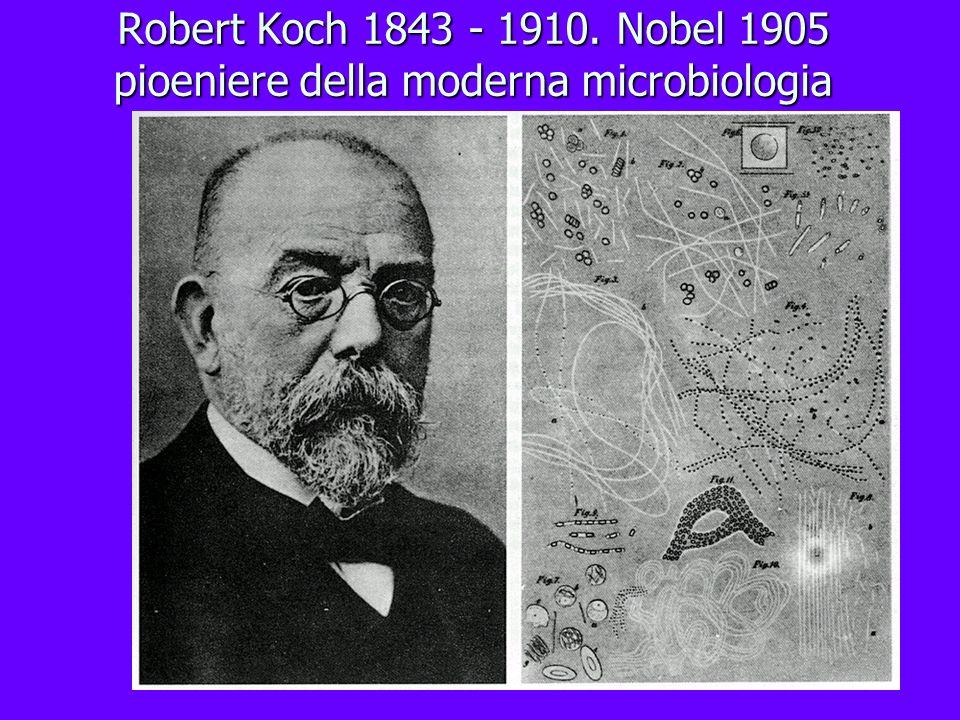 Robert Koch 1843 - 1910. Nobel 1905 pioeniere della moderna microbiologia