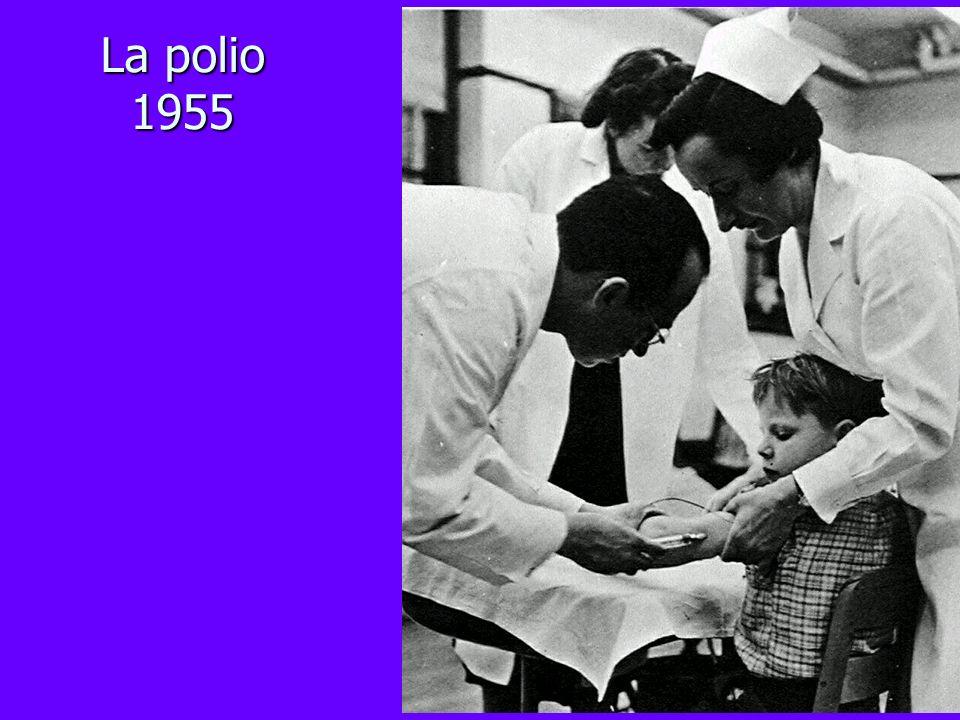 La polio 1955