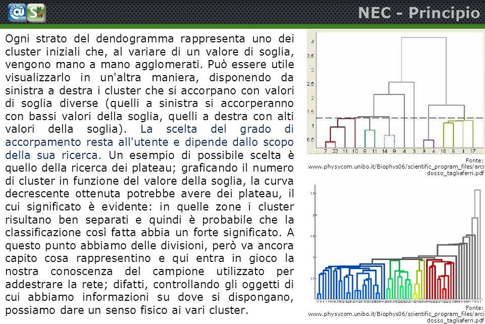 NEC - Principio