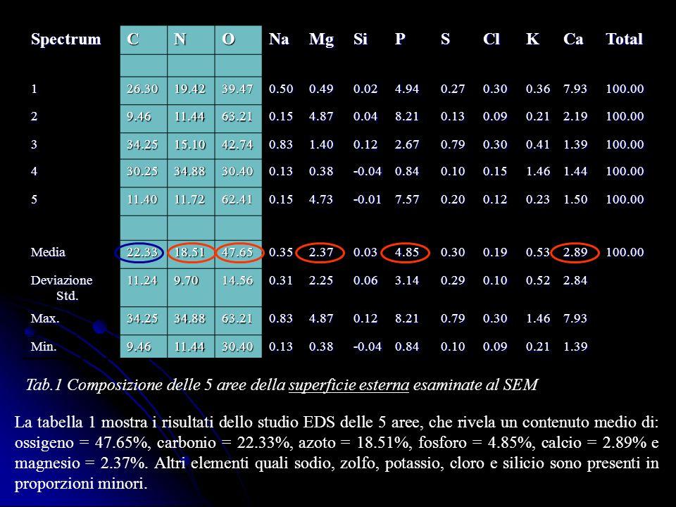 Spectrum C N O Na Mg Si P S Cl K Ca Total