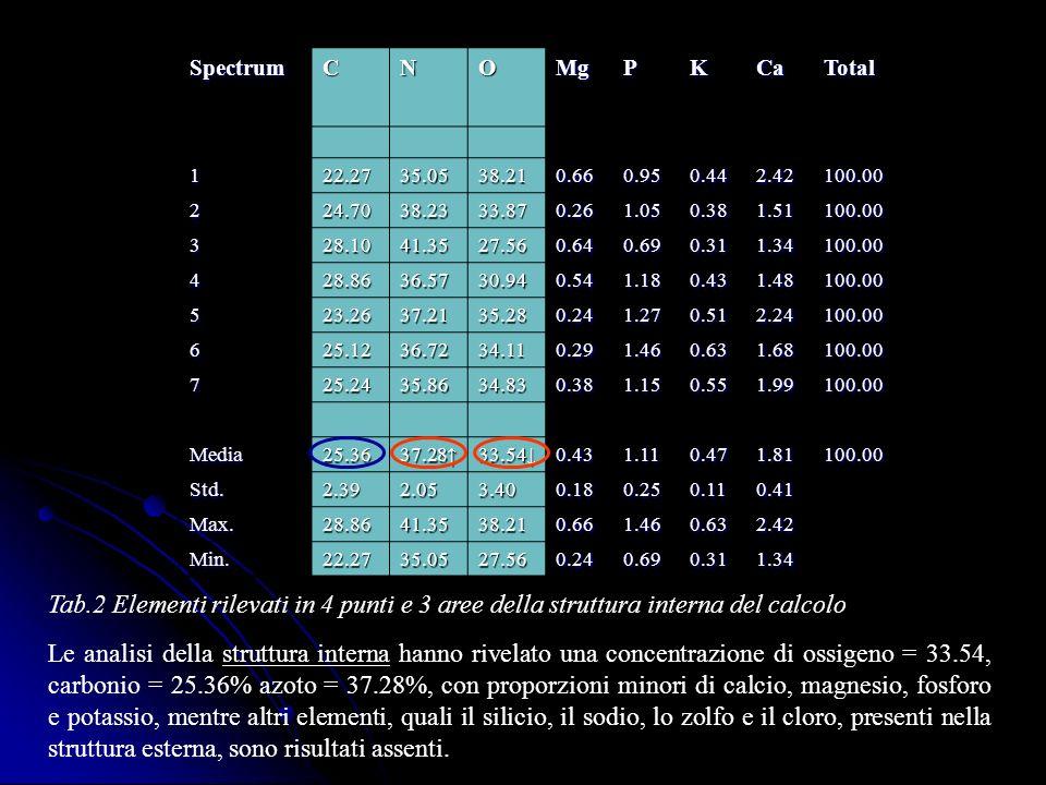 Spectrum C. N. O. Mg. P. K. Ca. Total. 1. 22.27. 35.05. 38.21. 0.66. 0.95. 0.44. 2.42.