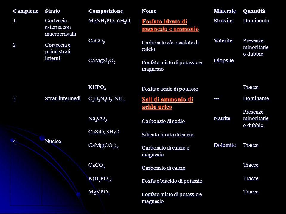 Fosfato idrato di magnesio e ammonio