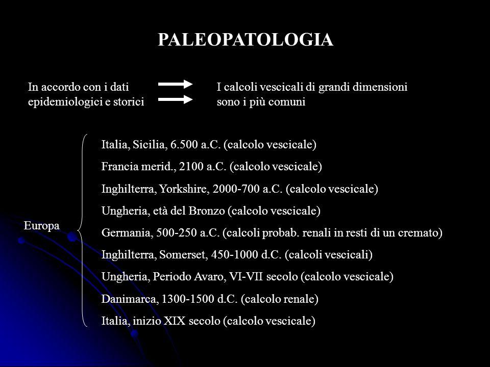 PALEOPATOLOGIA In accordo con i dati epidemiologici e storici