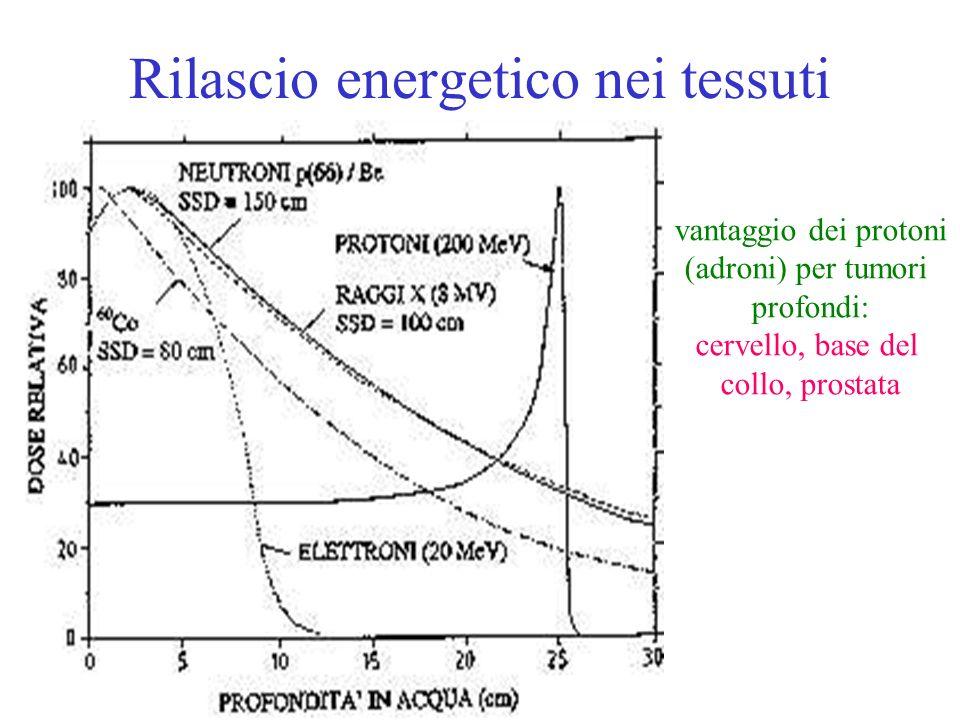 Rilascio energetico nei tessuti