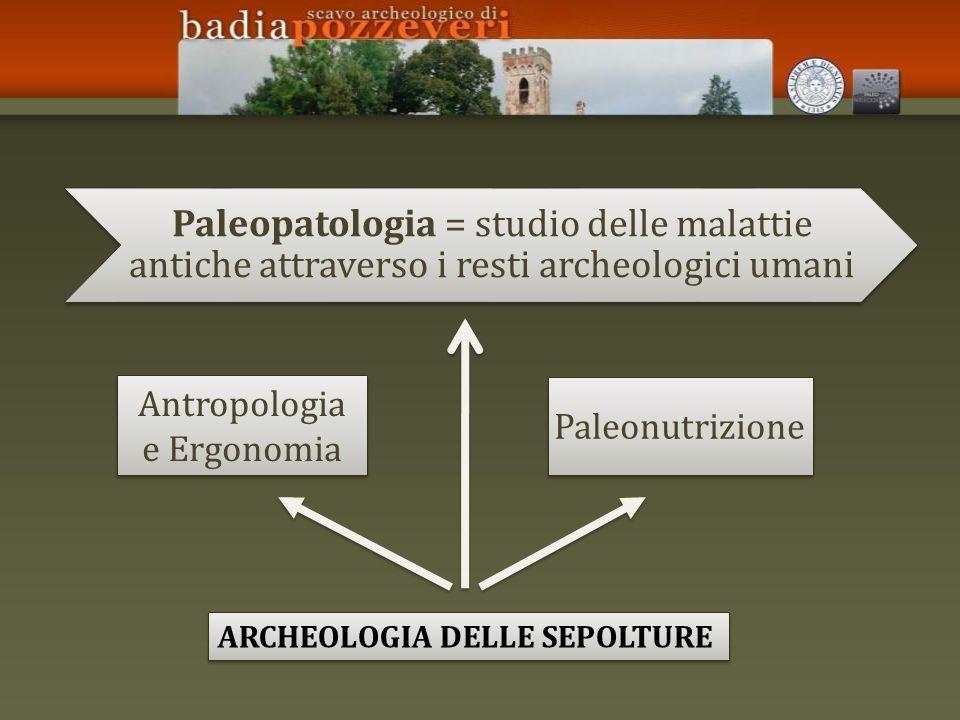 Antropologia e Ergonomia