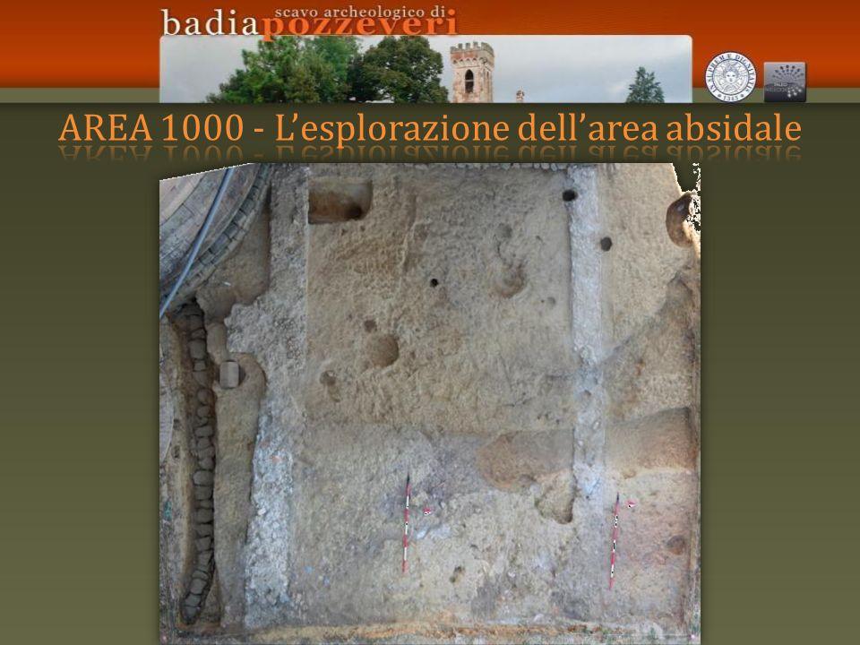AREA 1000 - L'esplorazione dell'area absidale