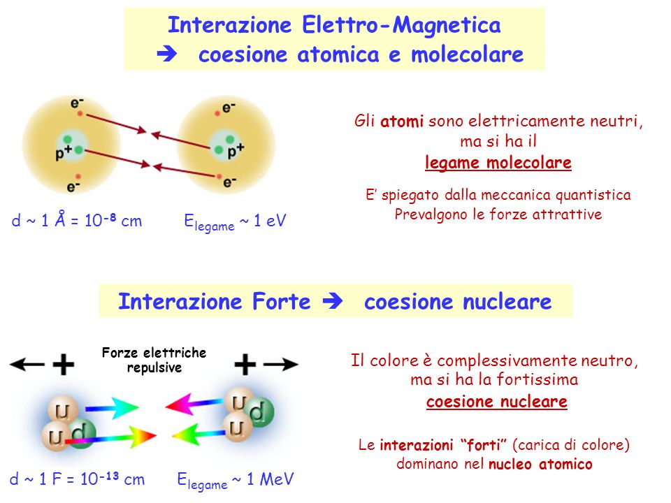 Interazione Elettro-Magnetica  coesione atomica e molecolare