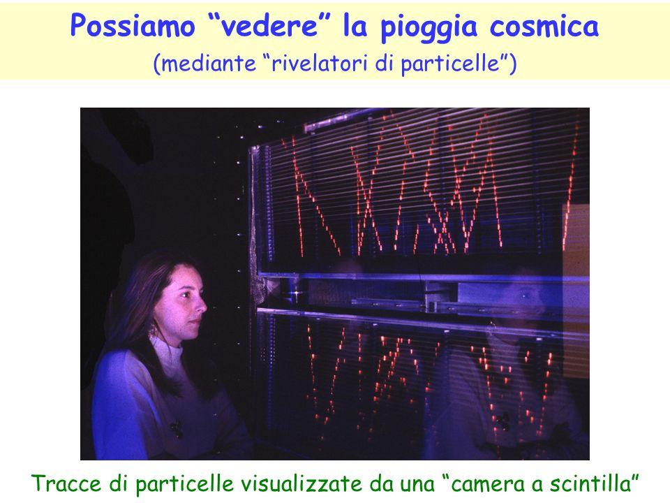 Tracce di particelle visualizzate da una camera a scintilla