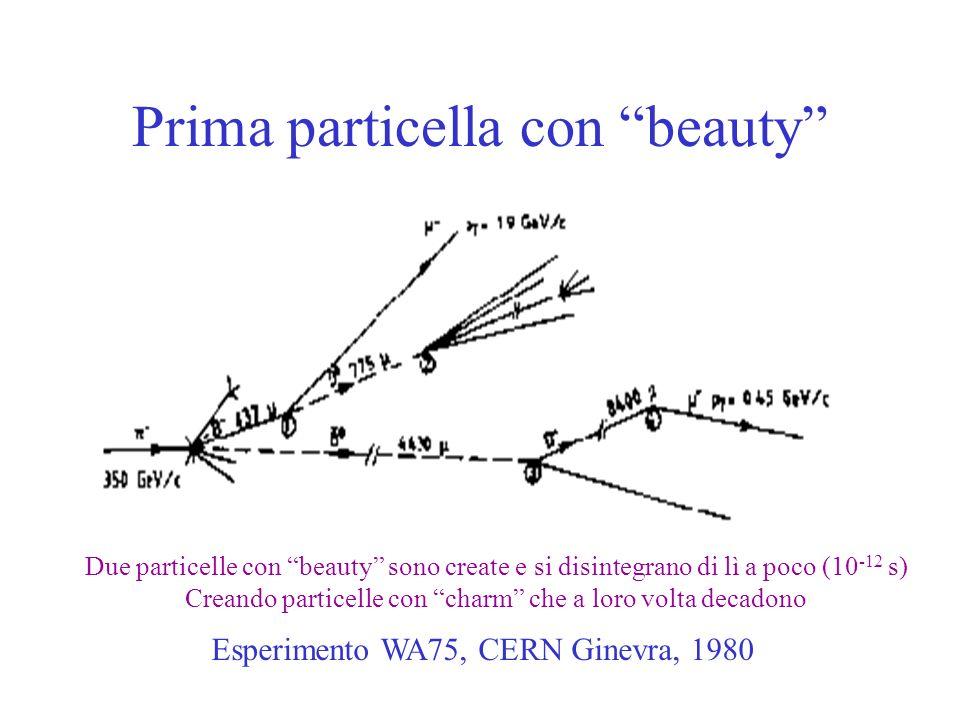 Prima particella con beauty