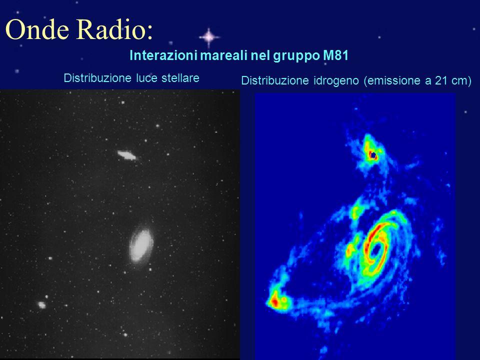 Interazioni mareali nel gruppo M81