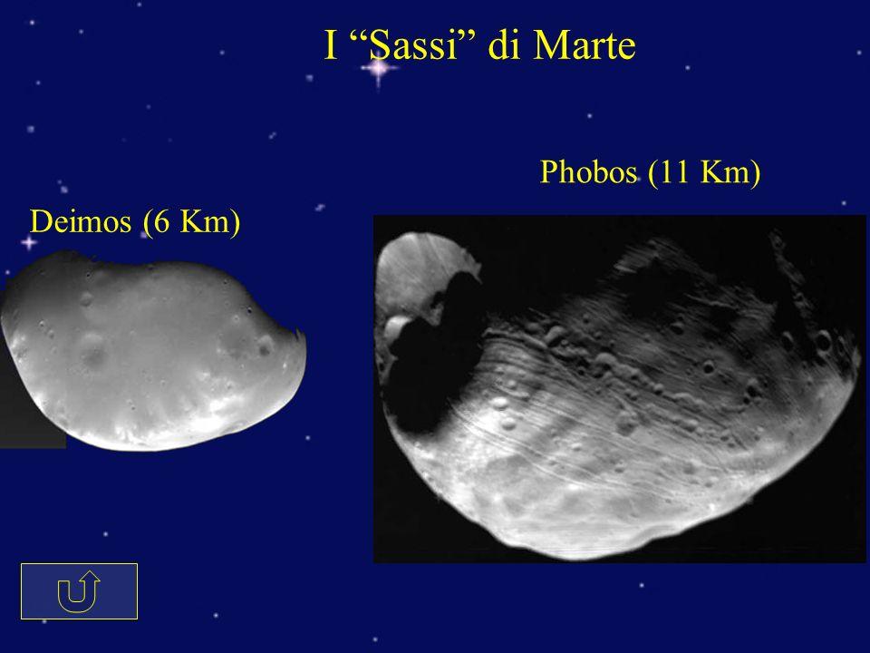 I Sassi di Marte Phobos (11 Km) Deimos (6 Km)