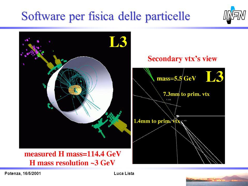 Software per fisica delle particelle