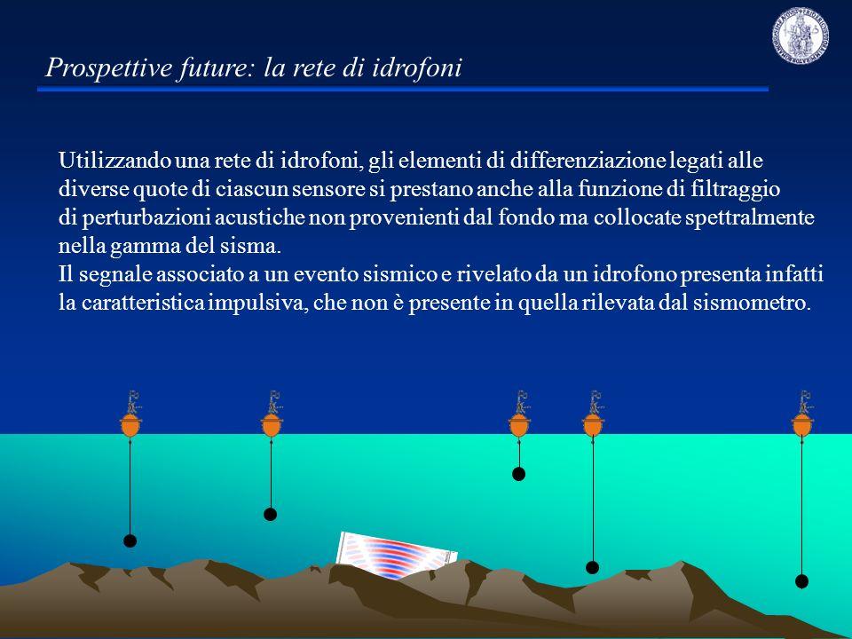 Prospettive future: la rete di idrofoni