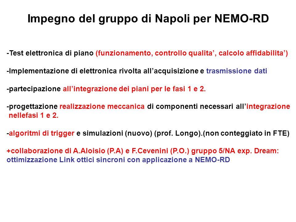Impegno del gruppo di Napoli per NEMO-RD